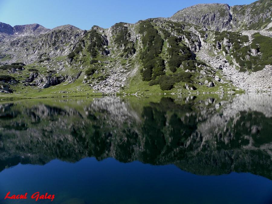 Lacul Gales.
